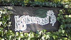 Kokopelli4
